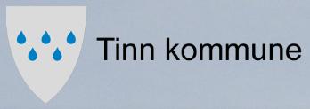 tinn.jpg
